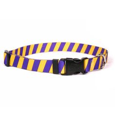 Team Spirit Gold and Purple Break Away Cat Collar available at  HotDogCollars.com Minnesota Vikings 91da5a7f0