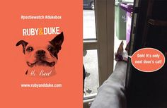 Dogs everywhere are on high alert for their Ruby & Duke #Dukebox #postiewatch  www.rubyandduke.com  #dogsofinstagram #dogstagram #dogs #dogsrule #doglove #doglovers #doglife #dogoftheday #doggy #doglover #doggie #dogscorner #dogofinstagram #dogsofinsta #dogwalk #dog_features #doggies #dogsandpals #dogloversofinstagram #dogdays #dogsofinstaworld #dogcrushdaily #dogslover Dog Walking, Dog Toys, Dog Life, Duke, Doggies, Dog Lovers, Instagram Posts, Pet Dogs, Lap Dogs