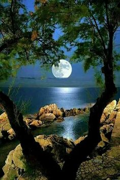 Ideas photography nature beautiful landscapes for 2019 Shoot The Moon, Nature Pictures, Amazing Nature, Belle Photo, Pretty Pictures, Full Moon Pictures, Beautiful Moon Pictures, Beautiful Landscapes, Wonders Of The World