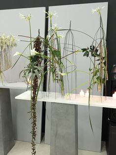 more to show. hope, there is a bit time to watch for many in the profession and also for the friends of flowerdesign. its so much to do. lets prepare ….ghl