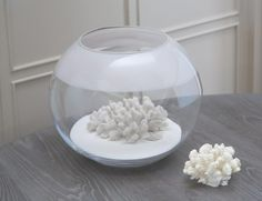 Accessorise with the Decorative White Sand for only from Kelly Hoppen London. Adds the finishing touch to our coral and succulents, perfect with our globe collection. Interior Design Advice, Decor Interior Design, Interior Ideas, Decorative Accessories, Home Accessories, Kelly Hoppen Interiors, Egyptian Cotton Towels, Pure White, Coral