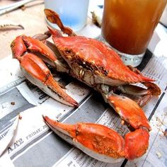 Enjoy a wide range of local seafood and arts & crafts at the 32nd Annual John's Pass Seafood Festival Oct 25-27 http://destinationtampabay.com/events/32nd-annual-johns-pass-seafood-festival/