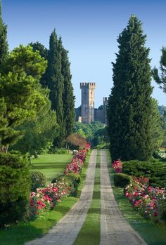 Sigurtà Park, near Verona and Lake Garda, Italy is considered one of the 5 most beautiful gardens in the world.  See the Asters in bloom in September.