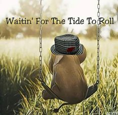 Can't wait for Sept Roll Tide! Ua Football, College Football Teams, Crimson Tide Football, Football Memes, Alabama Football, Alabama Crimson Tide, Oklahoma Sooners, Football Season, American Football