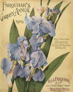 Farquhar's garden annual / R.  J. Farquhar Company :: Nursery and Seed Catalogs
