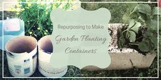 Stop! Don't throw out that milk jug or that oatmeal carton! Things like this can easily be repurposed into garden planting containers! Find out how here!