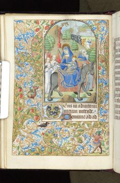 Book of Hours, MS M.312 fol. 66v - Images from Medieval and Renaissance Manuscripts - The Morgan Library & Museum