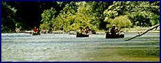 The Beatiful Driftwood River
