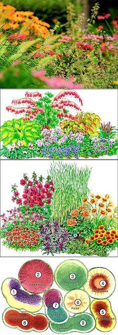 Живописные клумбы. | Цветы | Постила