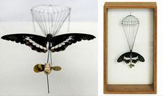 Healing Broken Butterflies