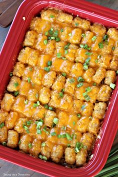 casserole recipes Try this easy Cheeseburger Tator Tot Casserole Recipe. An Easy Tator tot Casserole recipe that is loaded with cheese and packed with flavor. Cheeseburger Tater Tot Casserole, Macaroni And Cheese Casserole, Ground Beef Casserole, Easy Casserole Recipes, Cowboy Casserole, Chicken Casserole, Cheese Burger, Burger Toppings, Recipes