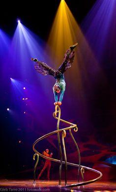 Cirque Du Soleil, OVO,Jan.2011