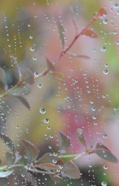 I love the sound of Rain drops! Walking In The Rain, Singing In The Rain, Rainy Night, Rainy Days, Rain Photography, Street Photography, I Love Rain, Sound Of Rain, Dew Drops