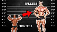 Shortest VS Tallest Bodybuilders EVER - Does Size Matter? - YouTube Pro Bodybuilders, Size Matters, Arnold Schwarzenegger, Bodybuilding, Youtube, Youtubers, Youtube Movies, Build Muscle