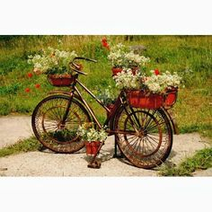 Volver A La Bicicleta