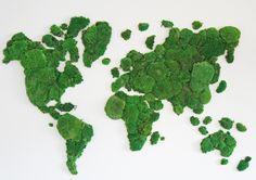 Greta, Moss Terrarium, Feng Shui, Herbs, House Design, Vegetables, Plants, Hydroponics, World Wide Map