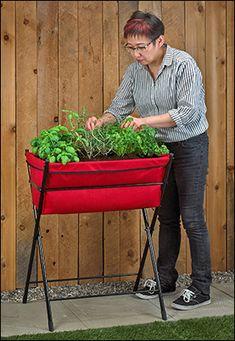 VegTrug™ Eco Poppy - Gardening