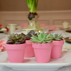 Pink Potted Succulents Easy potted succulent craft, place setting decor, and/or take home party favo Garden Party Favors, Party Favors For Adults, Swap Party, Diy Party, Party Ideas, Easter Brunch, Easter Party, Succulent Pots, Planting Succulents