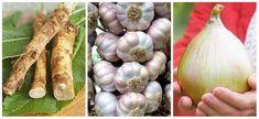 Trik, ako ju môžete u vás doma zrýchliť až trojnásobne! Onion, Garlic, Vegetables, Health, Food, Medicine, Embroidery Ideas, Hand Embroidery, Salud