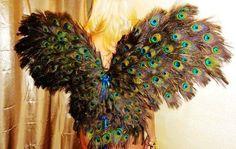Peacock Angel | Peacock Angel Wings