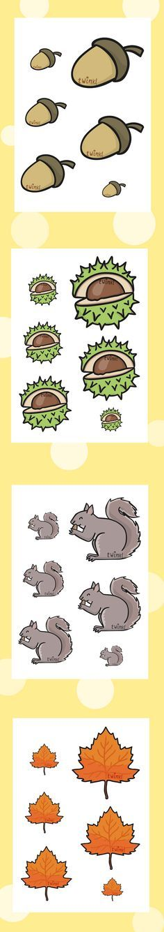 Twinkl Resources >> Autumn Size Ordering >> Printable resources for… Autumn Activities, Toddler Activities, Preschool Activities, Croissant Décroissant, Tree Study, Teaching Aids, Autumn Crafts, Classroom Displays, Kids Cards