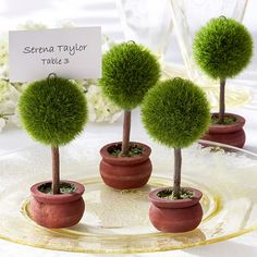 Topiary Place Card Holders by Beau-coup