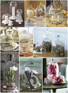 Glass Bell Jar Inspiration!!! So many ideas on how to use cloches!