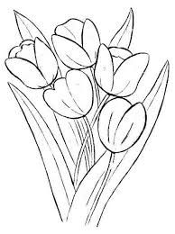 Flowers And Plants In Clay Pots Coloring Pages For Kids