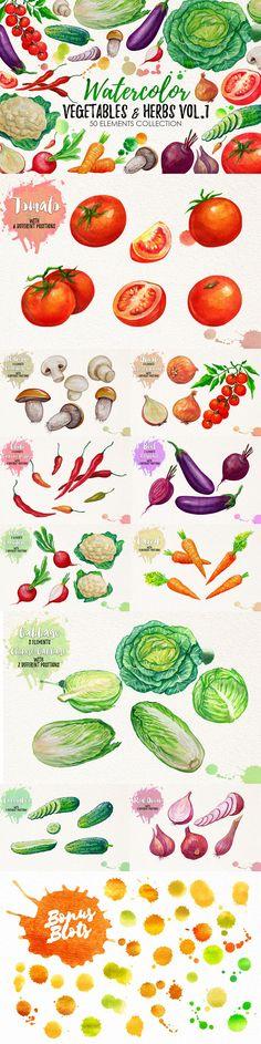 Watercolor Bundle 2017 by iGRAPHOBIA on @creativemarket