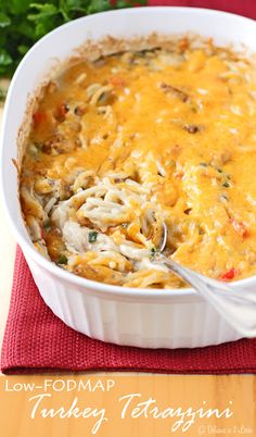 Easy Turkey (or Chicken) Tetrazzini from Scratch {Low-FODMAP, Gluten-Free} / Delicious as it Looks, Added about a cup of sour cream because I made 12 oz of noodles instead of 8 oz Dieta Fodmap, Fodmap Diet, Low Fodmap, Fodmap Foods, Fodmap Recipes, Gluten Free Recipes, Healthy Recipes, Celiac Recipes, Vegetarian Recipes