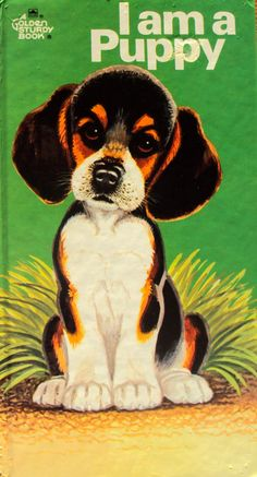 I Am A Puppy (1970) by Ole Risom - A Golden Sturdy Book - Vintage Childrens Books