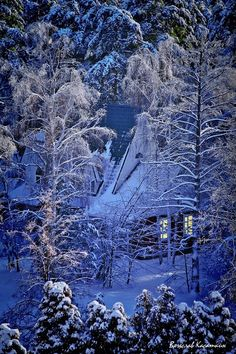 Don't know if this photo is from AK or not, but very well could be. I love light from cozy cabins tucked into the woods.