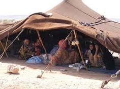 """Résultat de recherche d'images pour """"village tente nomades"""" Outdoor Gear, Photos, Images, Recherche Google, Google Search, Architecture, People, Tents, God"""