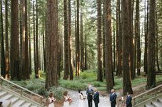 An outdoor wedding ceremony set at the UC Berkeley Botanical Garden with a nod to the fall season, including a deep red color palette.