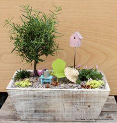un jardin miniature dans une boite en bois