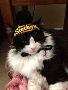 Pittsburgh Steelers Dog Hats or Cat Hats Crocheted with Pompom X Small or  Small by Fancihorse 250ec6952