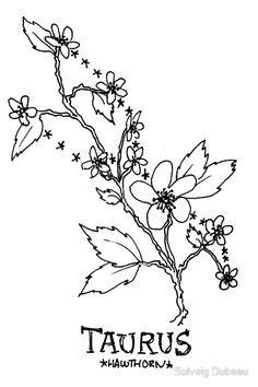 Floral Constellation - Taurus by Solveig Dubeau