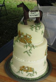 cute idea...western theme wedding cake.This would look great with a traditional topper as well.