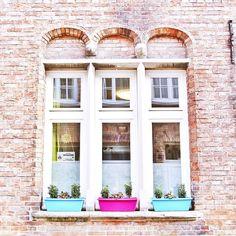 «Je viens de tomber en amour pour la sublime Bruges  Cette ville est vraiment d'une pure beauté ! & l'amoureuse de briques que je suis en a pris plein…»