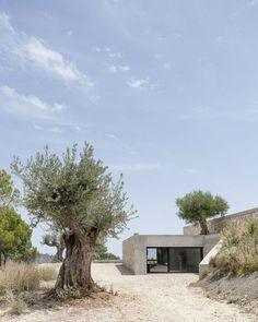 HOUSE IN MOUNT MAIGMO, ALICANTE by ALDREDO PAYA ARCHITECTURE