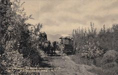 ADIRONDACK MTs , New York , PU-1908 ; Stagecoaches, Road to Blue Mt.