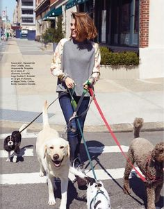 Everything About Energetic Cavalier King Charles Spaniel Health Monaco Princess, Princess Caroline Of Monaco, Princess Charlotte, King Charles Spaniel, Cavalier King Charles, Charlotte Casiraghi Style, Muse Magazine, Interview, Monaco Royal Family