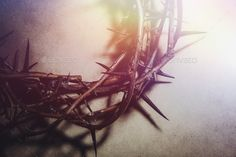 Buy Jesus Christ crown of thorns by Arrangements-Photography on PhotoDune. Closeup of a representation of the Jesus Christ crown of thorns. Worship Backgrounds, Church Backgrounds, Powerpoint Background Design, Background Designs, Christian Wallpaper, Christian Backgrounds, Jesus Crown, Dark Red Wallpaper, Graphics Vintage