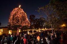 Devendorf Park Tree Lighting 4:30 December 7th  Carmel-by-the-Sea, California