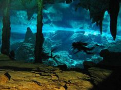 Ceynote diving Riviera Maya, Playa del Carmen ceynotes, What is a ceynote, how are they formed