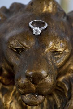 A strong relationship like a diamond and a lion! #wedtimestories #wedding #weddingphotography #weddingphotographer  #greeceweddingphotographer #weddingring
