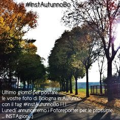 Photo by igersbologna  http://instagram.com/p/SF9j83xQtL/