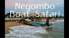 Negombo City Tour Sri Lanka's excellent tropical coastline is honored with brilliant sandy shorelines and serene angling towns, which are enjoyment to invest. Beach Holiday, Holiday Fun, Best Holiday Packages, Seaside Towns, Boat Tours, Best Hotels, Cool Places To Visit, Sri Lanka