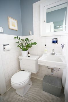 Pretty little Bathroom, Brewster Gray by Benjamin Moore