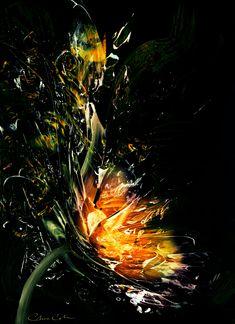 """Fire Lotus"" - Chris Cole"